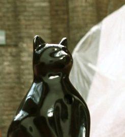 Conheça a montagem do novo acervo da Pinacoteca através de um gato-robô
