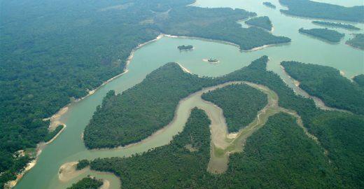 Curso de jornalismo sobre a Amazônia tem inscrições abertas