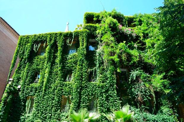 jardim vertical recife : jardim vertical recife:Movimento 90º visa disseminar jardins verticais por São Paulo