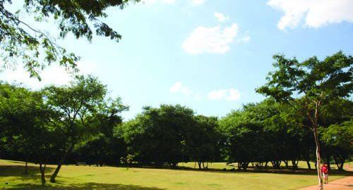 Virada Sustentável: parque da juventude estará repleto de atividades para adultos e crianças