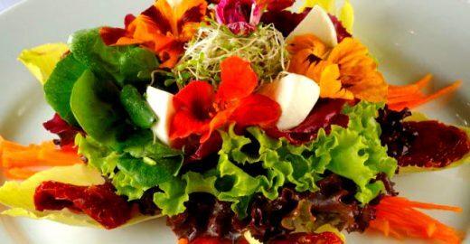 Conheça algumas flores que podem ser utilizadas em alimentos