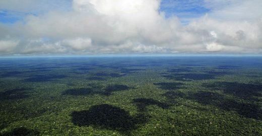 Área de 952 mil hectares será destinada à preservação no AM