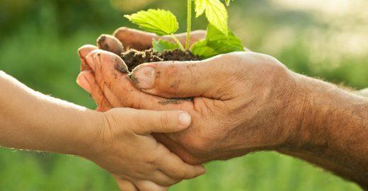 Prêmio Cidadão Sustentável – Meio Ambiente