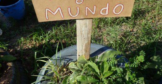 """Projeto """"Planta na Rua"""" promove mutirões de plantio"""