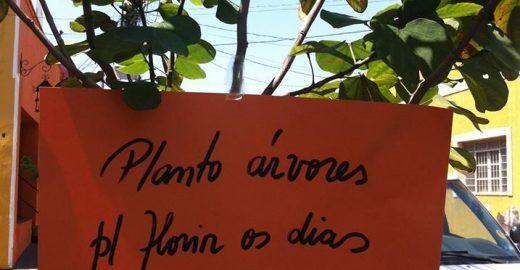 Com poesia e plantio, coletivo luta por mais árvores em Cuiabá