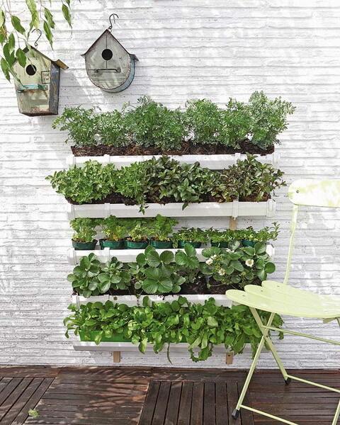 jardim vertical moderno: calhas para montar um belo jardim – Seletti