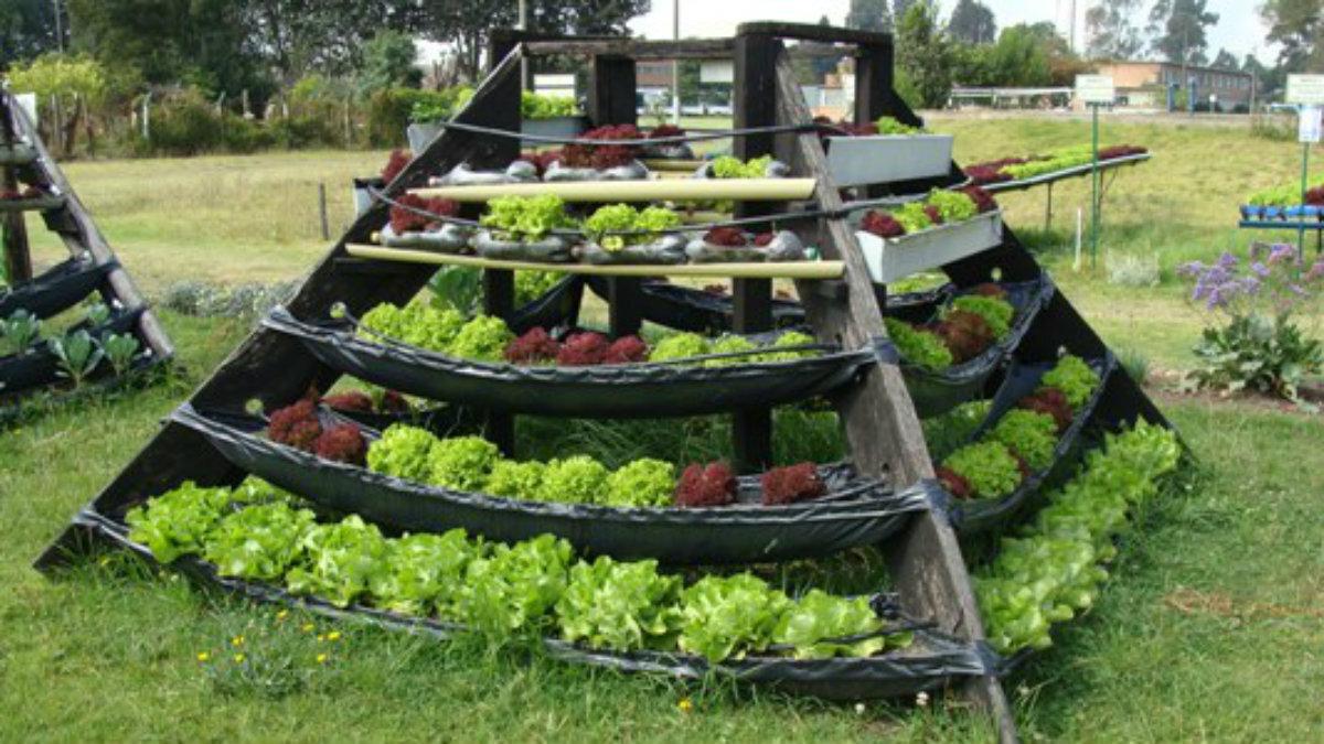 Manual de agricultura urbana promove alimenta o for Hacer un huerto en el jardin