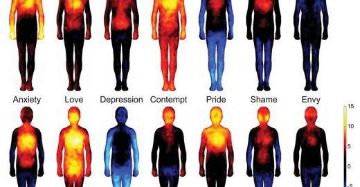 Cientistas mapeiam as emoções no corpo humano