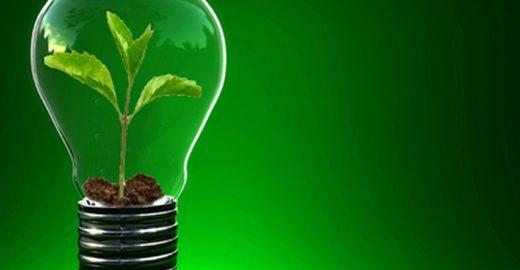 Portal incentiva empreendedorismo social