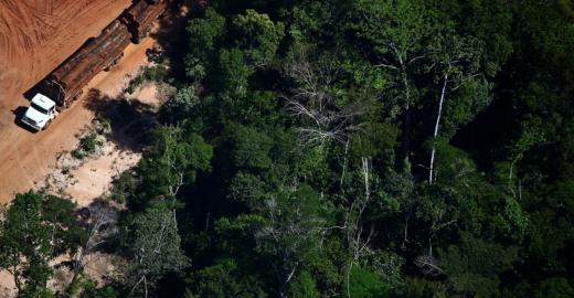 A destruição da Floresta Amazônica nas lentes de Rodrigo Baleia