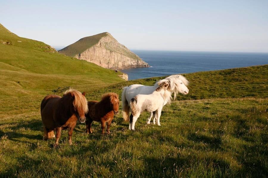 visit.shetland.org