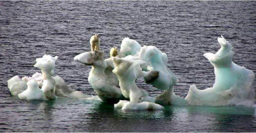26 imagens para você começar a pensar em mudanças climáticas