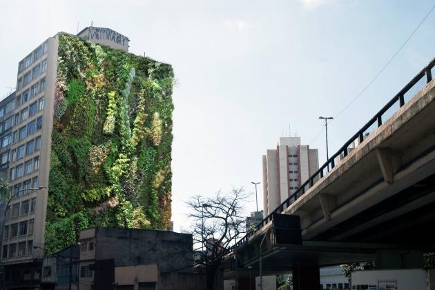 jardim vertical recife : jardim vertical recife:Depois do primeiro, Minhocão ganhará mais 40 jardins verticais