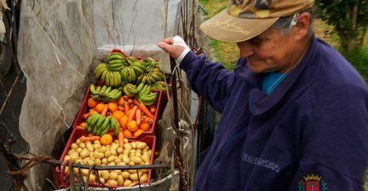 Curitiba troca lixo reciclável por frutas e verduras