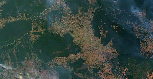 Segundo cientista, Amazônia teve 2 milhões de km² degradados; leia estudo completo