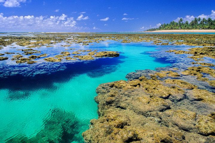 Piscinas naturais: Descubra os 'Caribes brasileiros'