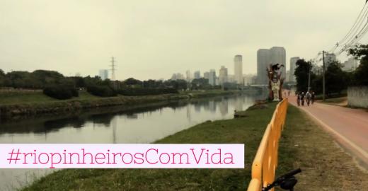Vamos ocupar o Rio Pinheiros?
