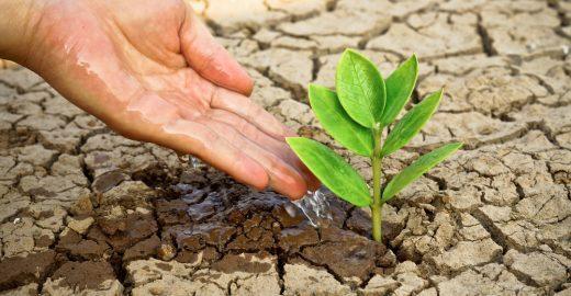 Concurso da Fiap premia a melhor ideia que solucionar a crise da água, com  bolsa de estudo no exterior