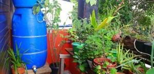 Construcao-de-Cisternas-Domesticas_divulgacao