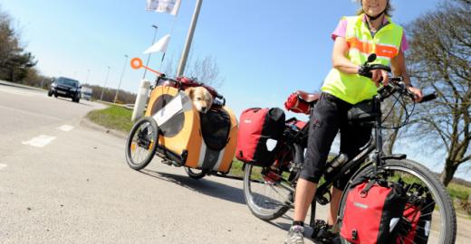 Aos 65, britânica pedala 8.000 km com seu cão para arrecadar £ 25.000 para ONGs