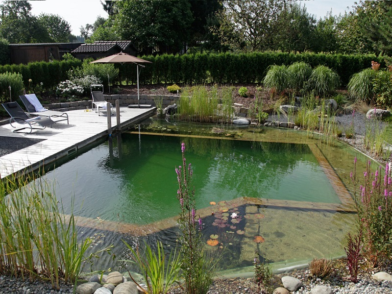 Piscinas ecol gicas que substituem o cloro por plantas for Como hacer una piscina ecologica