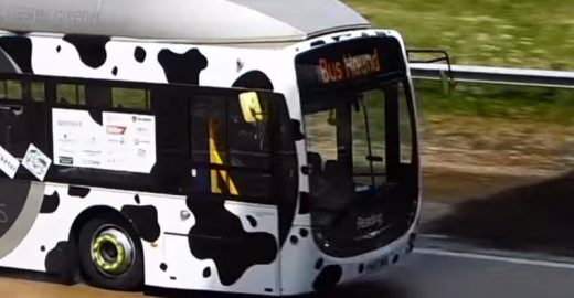 Ônibus movido a cocô de vaca bate recorde de velocidade na Inglaterra