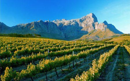 Vinícolas nos arredores de Cape Town | foto: africaencompassed.com