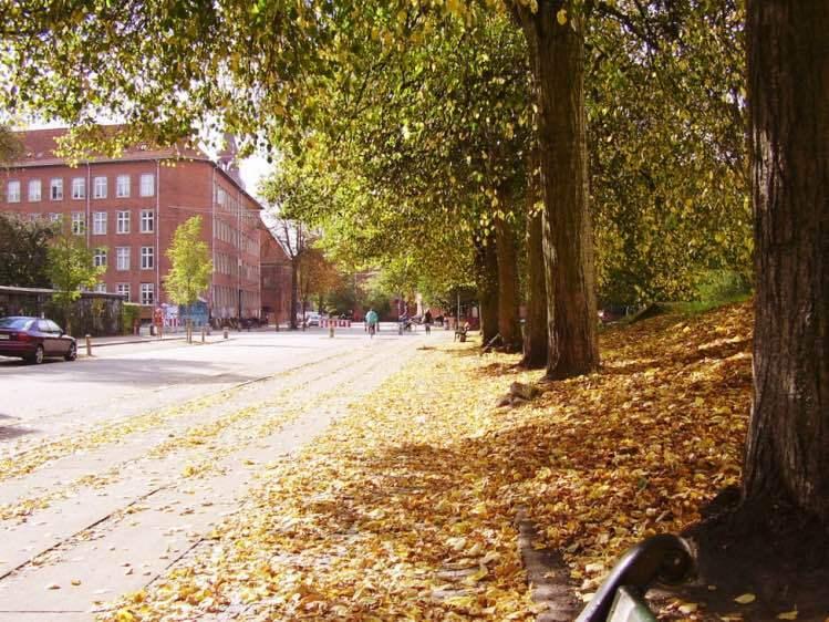 Bairro Norrebro, em Copenhague