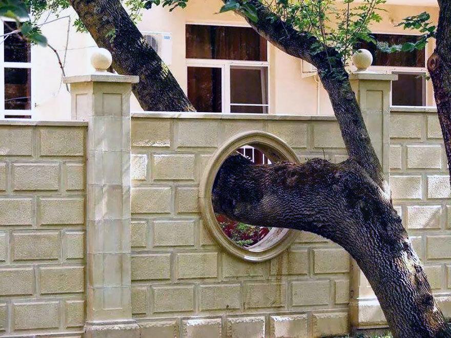 As casas unem o moderno com a natureza (Imagem: Report)