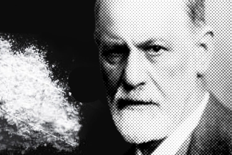 Como a coca na quase destruiu sigmund freud e william halsted for Experimentos de sigmund freud