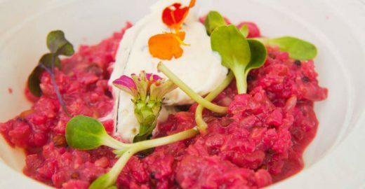 'VI Festival de Gastronomia Orgânica' ocupa o Parque da Água Branca