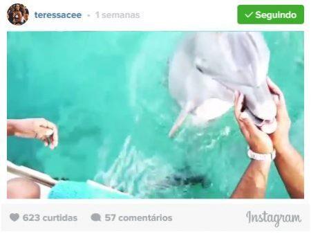 Divulga��o/Instagram