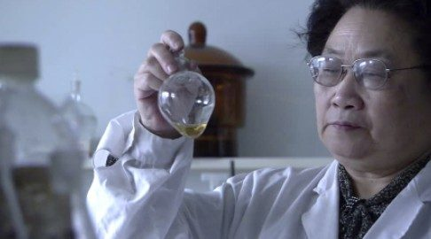 Chinesa sem diploma médico acha cura da malária e ganha Nobel de Medicina
