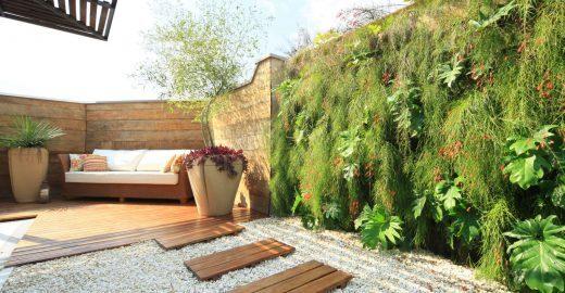 Introdução a jardinagem e paisagismo