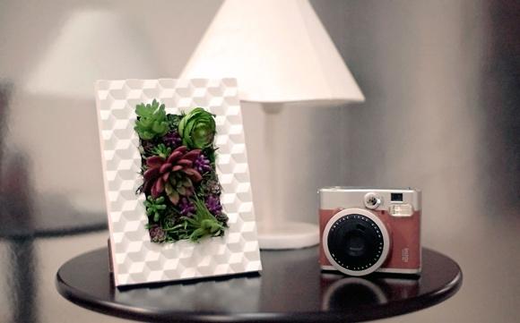 jardim vertical quadro verde:Aprenda a fazer um lindo quadro verde com plantas artificiais
