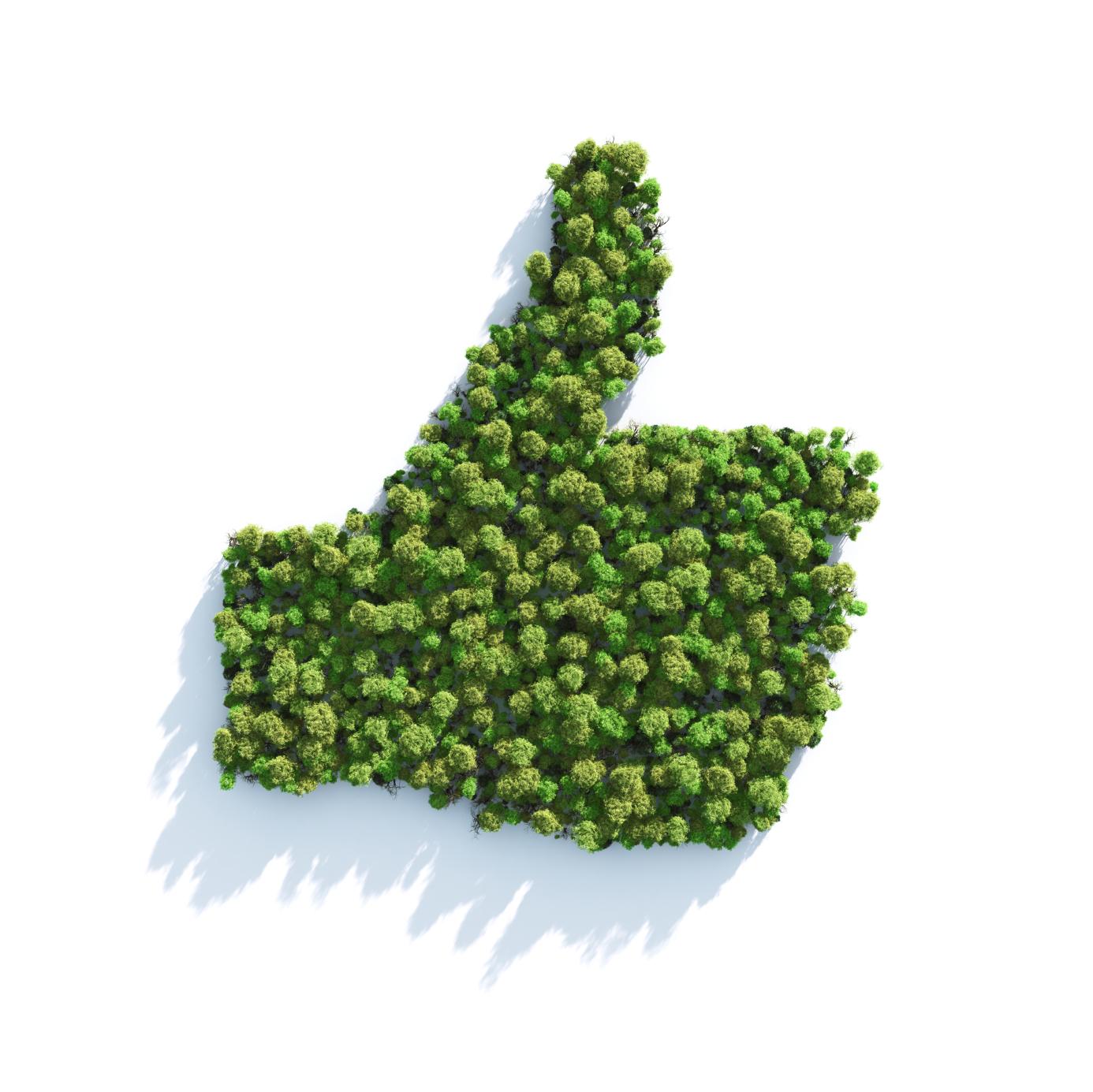 Iniciativas que ajudam a transformar o meio ambiente for Progetti di edilizia eco friendly