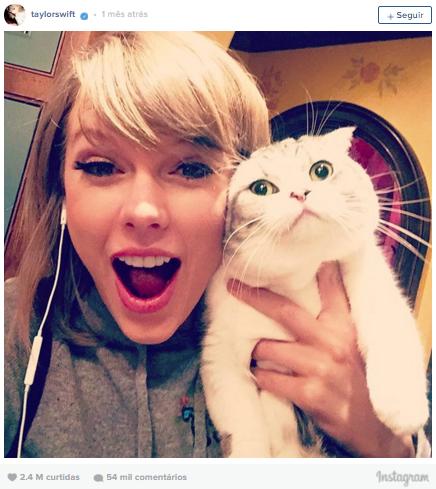 8º lugar: Taylor Swift, mais de 2,4 milhões de curtidas
