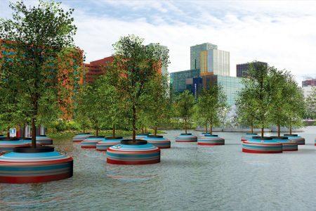 Projeto reaproveita árvores que possivelmente seriam descartadas para criar uma floresta flutuante