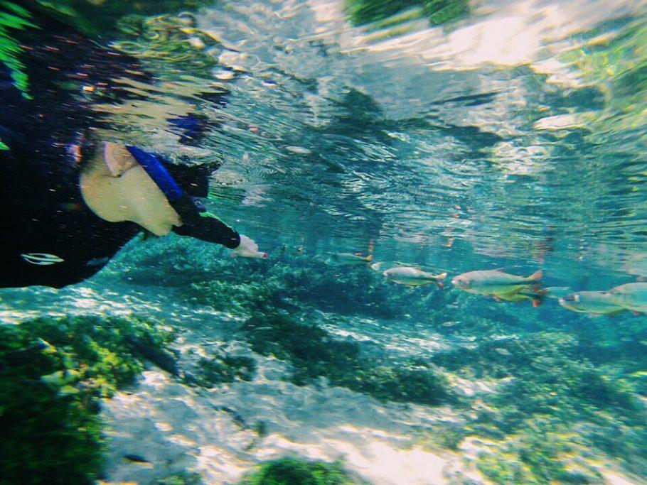 Flutuação no Recanto Ecológico Rio da Prata