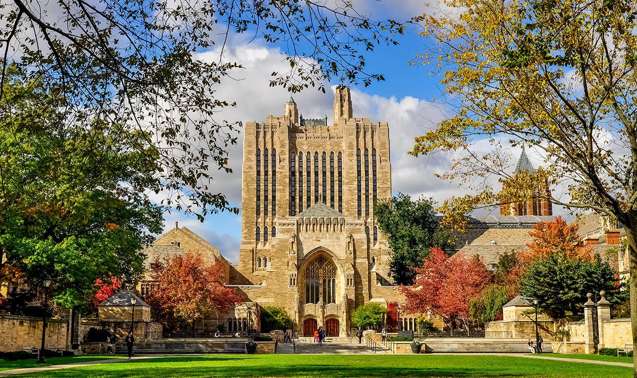 Universidade Yale oferece bolsa de estudo para brasileiros