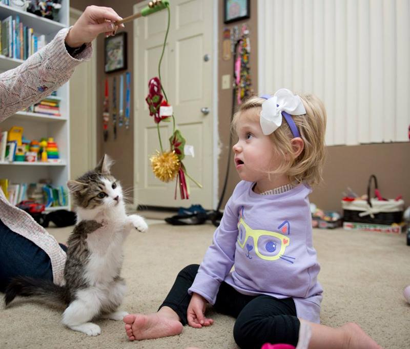 A pequena Scarlette e a gatinha Doc