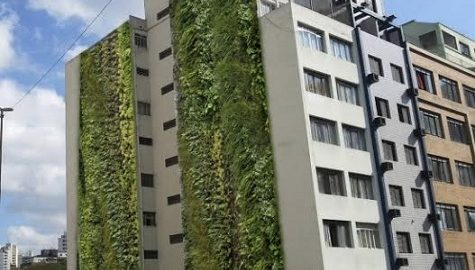 Com um dos menores índices de área verde do país, SP ganha jardins verticais na região central