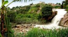 cachoeira_reproducao