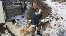 Jung vive na cidade de Asan, na Coreia do Sul