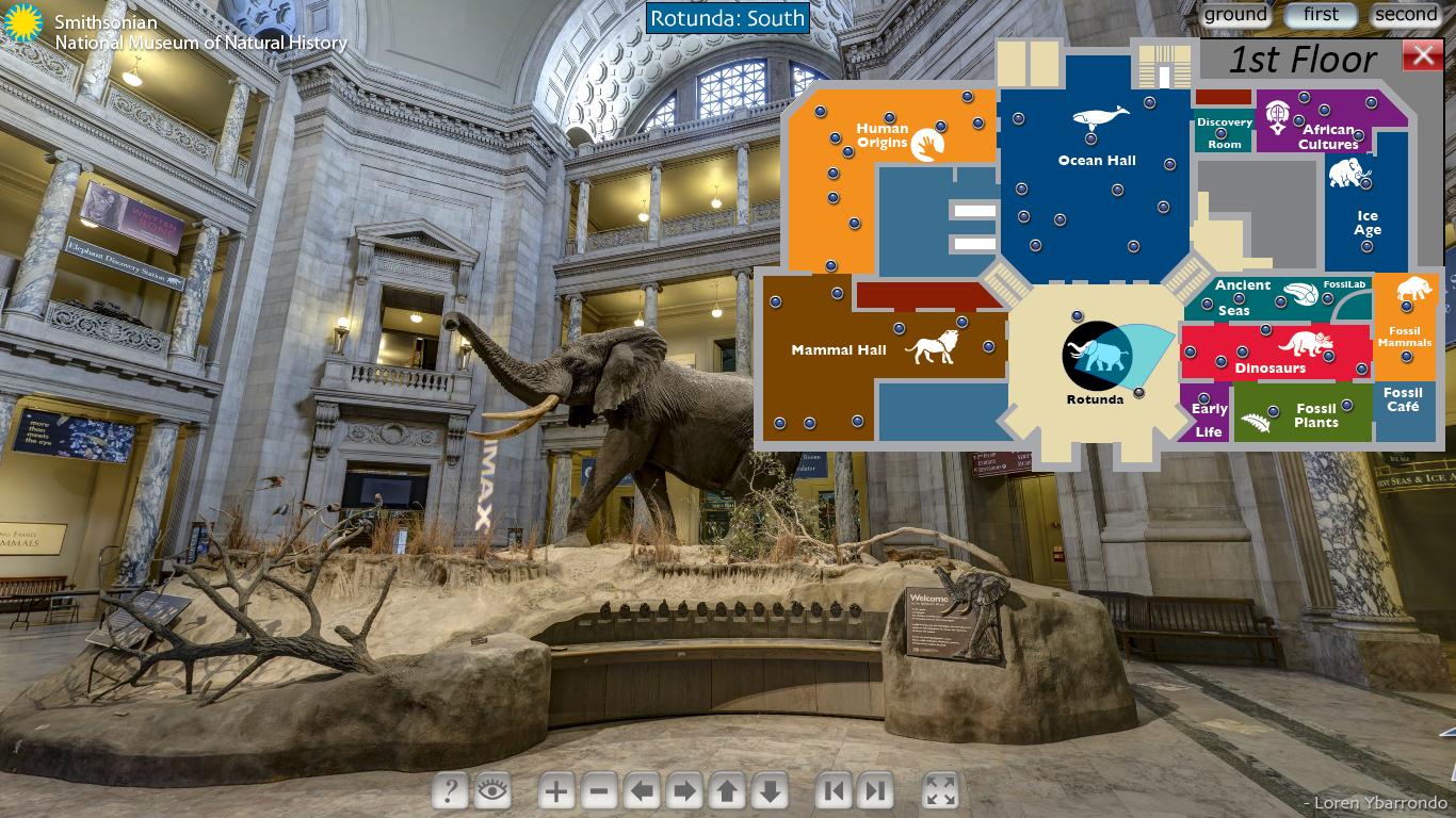 Tour Virtual do Museu de História Natural de Nova York