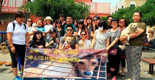 Ativistas protestam contra festival de carne de cachorro na China