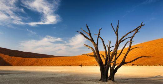 Namíbia tem um dos cenários mais exóticos e belos do mundo