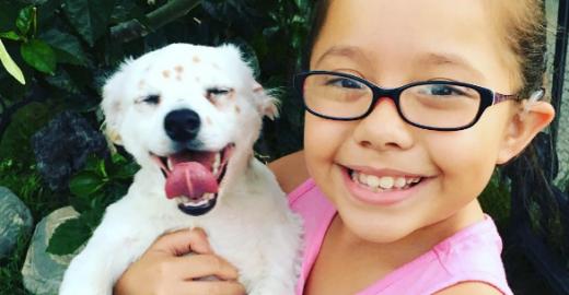 Garotinha surda adota e ensina língua de sinais para cão <mark class='searchwp-highlight'>surdo</mark>