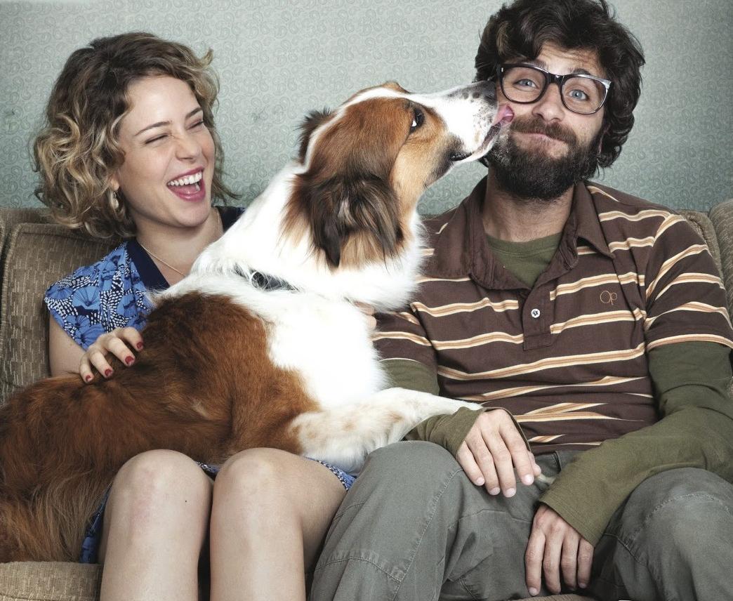 10 cães fofos que ganharam fama no cinema