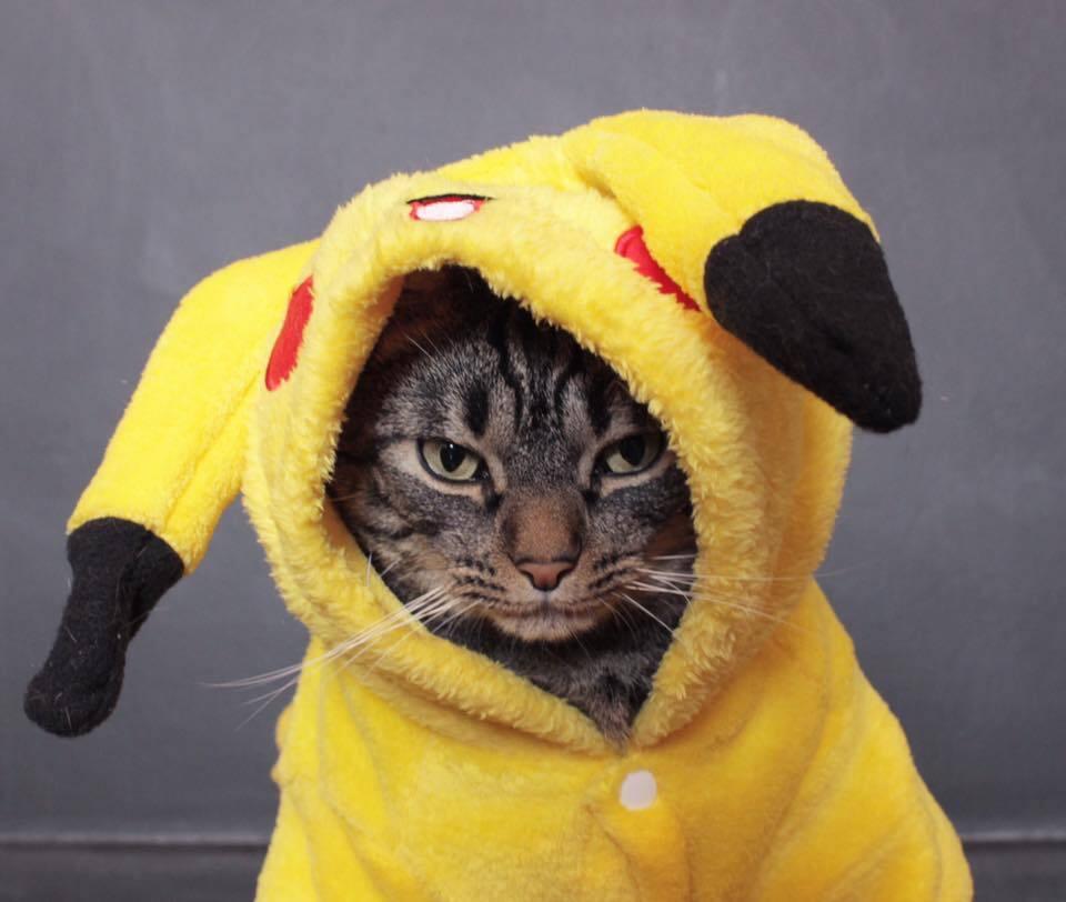 Virei Pikachu